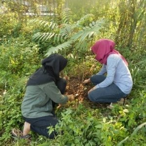 Education and Research Green Campus Telkom University